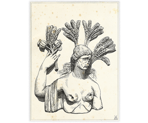 Marco Baldon   Illustrazione 9