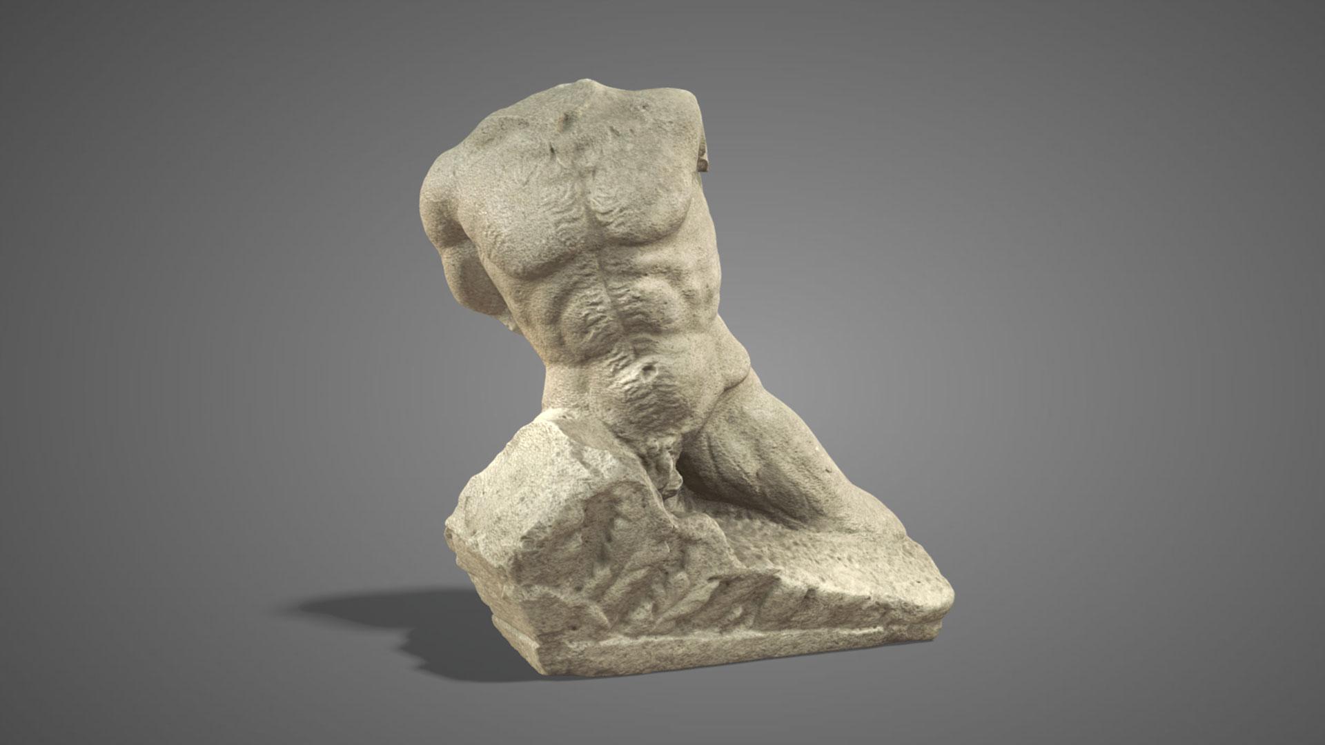 Busto Virile | Male torso - 3D Model