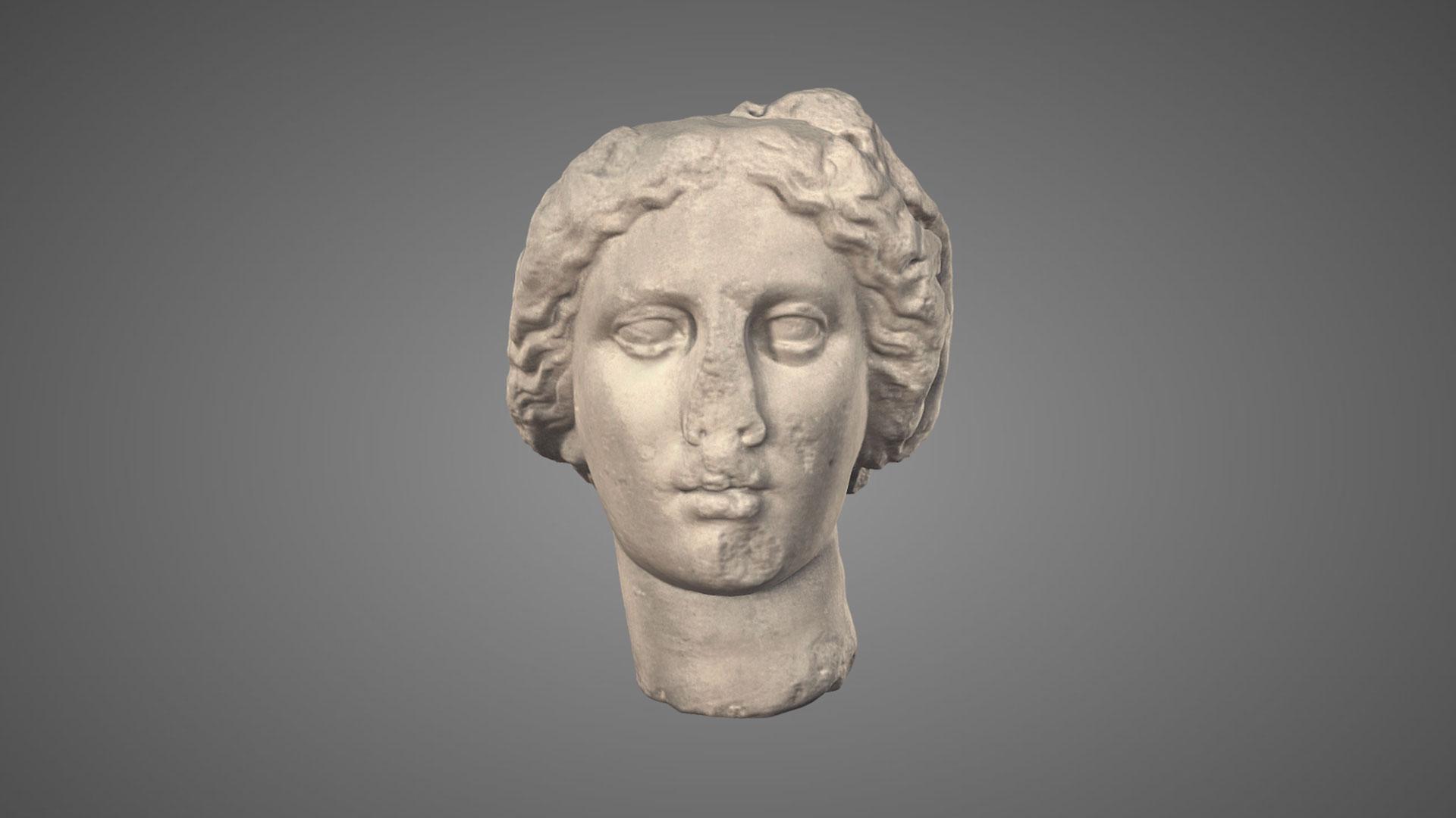 Testa di Dioniso - 3D Model