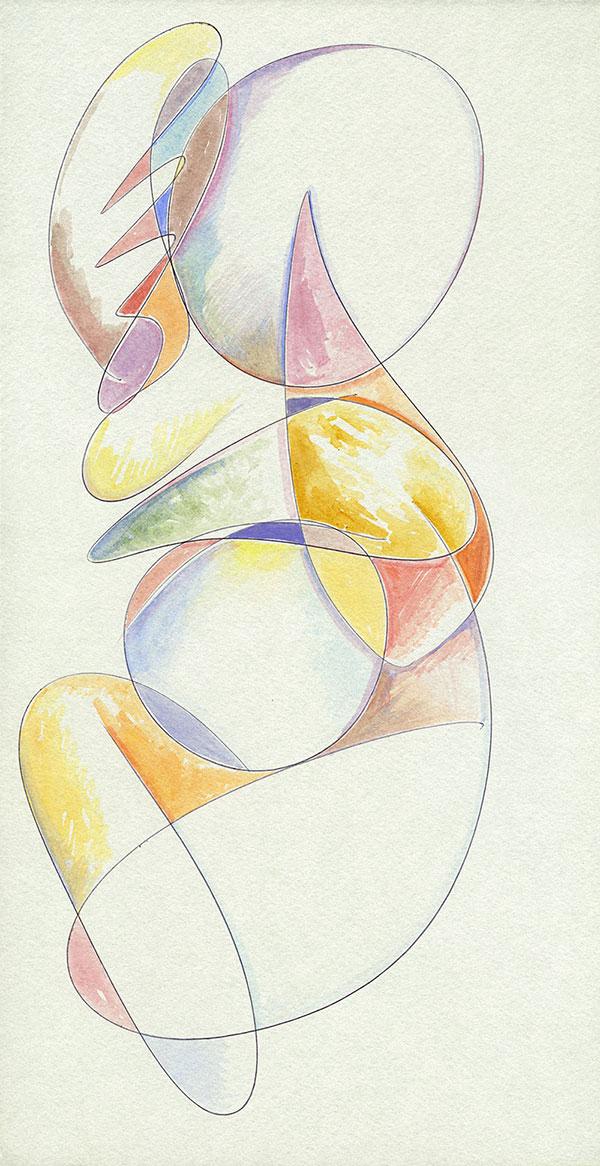 Evoluzione lineare di una Margravia - 3 acquerello su cartoncino 33,1 x 60 cm