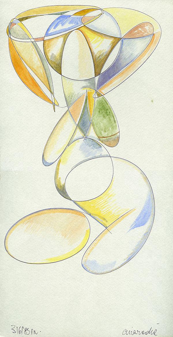 Evoluzione lineare di una Margravia - 7 acquerello su cartoncino 33,1 x 60 cm
